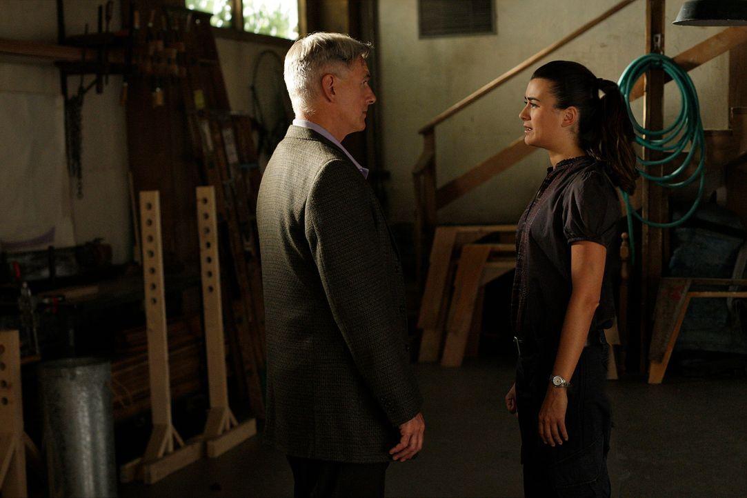 Tony, McGee und Abby nehmen Ziva (Cote de Pablo, r.) mit offenen Armen auf, doch Gibbs (Mark Harmon, l.) bleibt ihr gegenüber nach wie vor misstraui... - Bildquelle: CBS Television