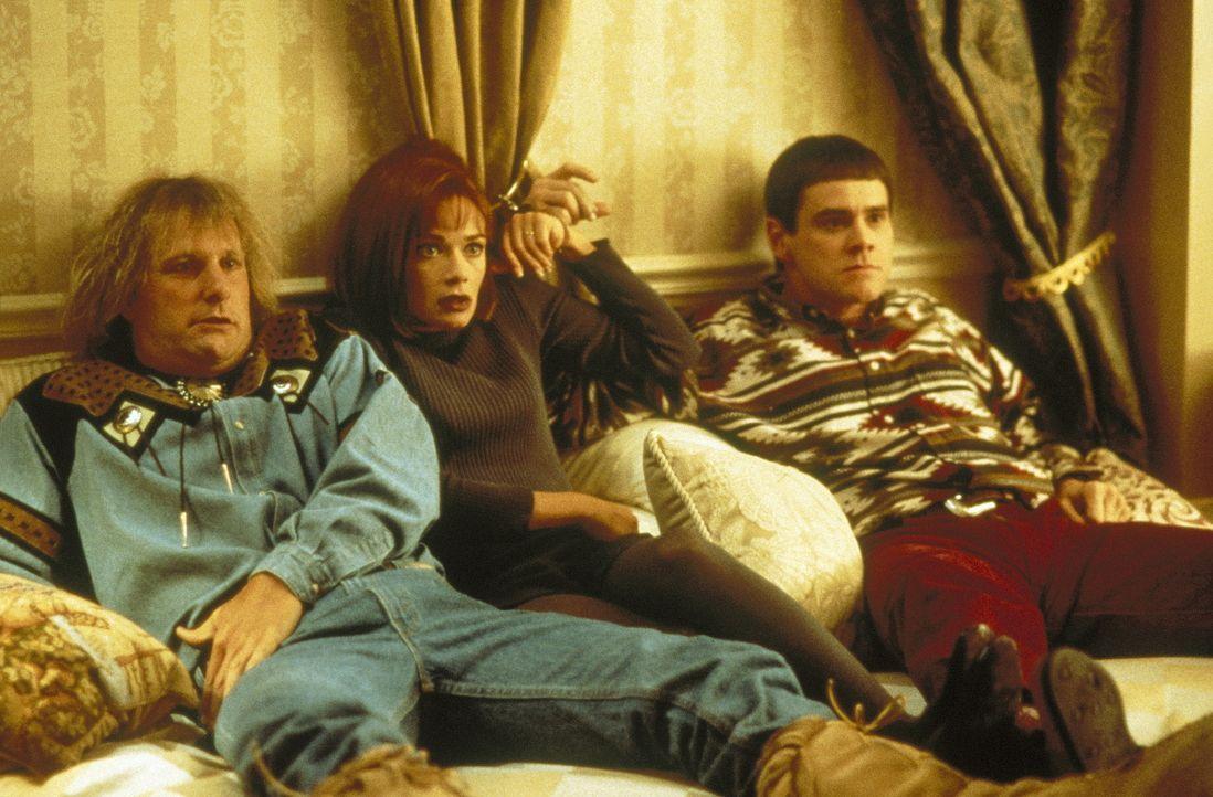 """Harry (Jeff Daniels, l.), Mary (Lauren Holly, M.) und Llyod (Jim Carrey, r.) finden das Nachmittagsprogramm ziemlich spannend - es läuft ja auch """"Di... - Bildquelle: New Line Cinema"""