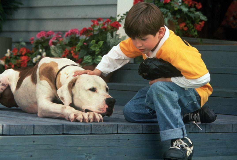 Jamie (Kevin Timothy Chevalia) liebt seinen Hund Chance über alles. - Bildquelle: Walt Disney Pictures