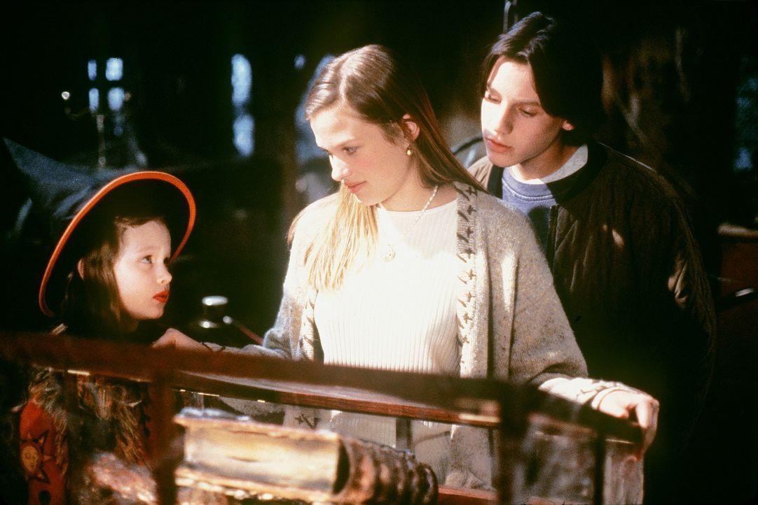Eines Tages entdecken die Kinder (v.l.n.r.) Dani (Thora Birch), Allison (Vinessa Shaw) und Max (Omri Katz) ein altes Hexenbuch - das bald brandaktue... - Bildquelle: The Walt Disney Company