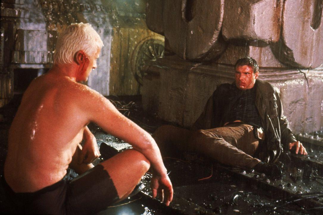 Replikant Roy Batty (Rutger Hauer, l) liefert sich mit Replikantenjäger Rick (Harrison Ford, r.) einen dramatischen Zweikampf ... - Bildquelle: Warner Bros.