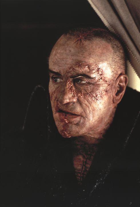 Die Kreatur (Robert De Niro) - Bildquelle: 1994 TriStar/JSB Productions, Inc. All Rights Reserved.