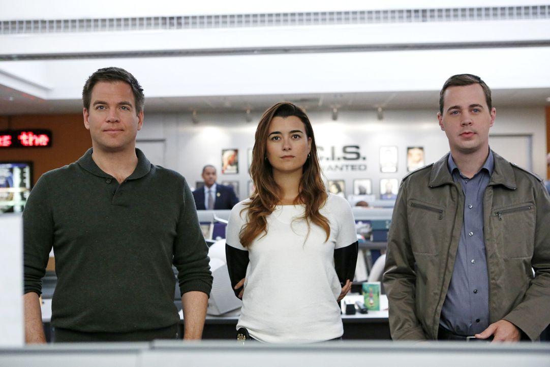 Ein neuer Fall wartet auf DiNozzo (Michael Weatherly, l.), Ziva (Cote de Pablo, M.) und McGee (Sean Murray, r.) ... - Bildquelle: CBS Television