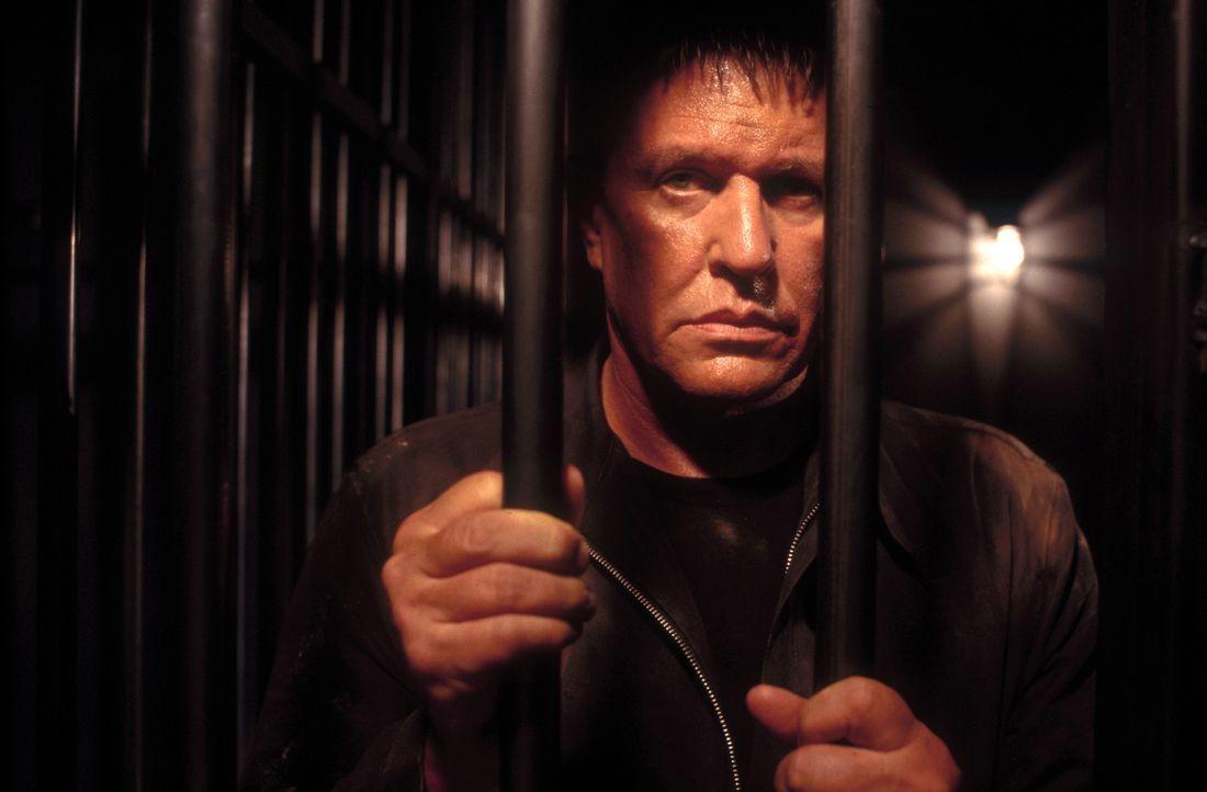 Sniper Thomas Beckett (Tom Berenger) wird von der NSA angeheuert, um einen Terroristen in Vietnam ausschaltet. Doch die Zielperson ist nicht irgendw... - Bildquelle: 2004 Sony Pictures Home Entertainment Inc. All Rights Reserved.