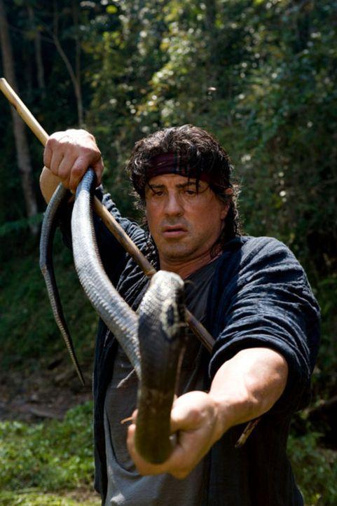 Rambo (Sylvester Stallone) hat das Kämpfen längst aufgegeben. Er lebt allein nahe der thailändisch-birmanischen Grenze. Mit Fischerei und Giftschlan... - Bildquelle: Karen Ballard Nu Image Films