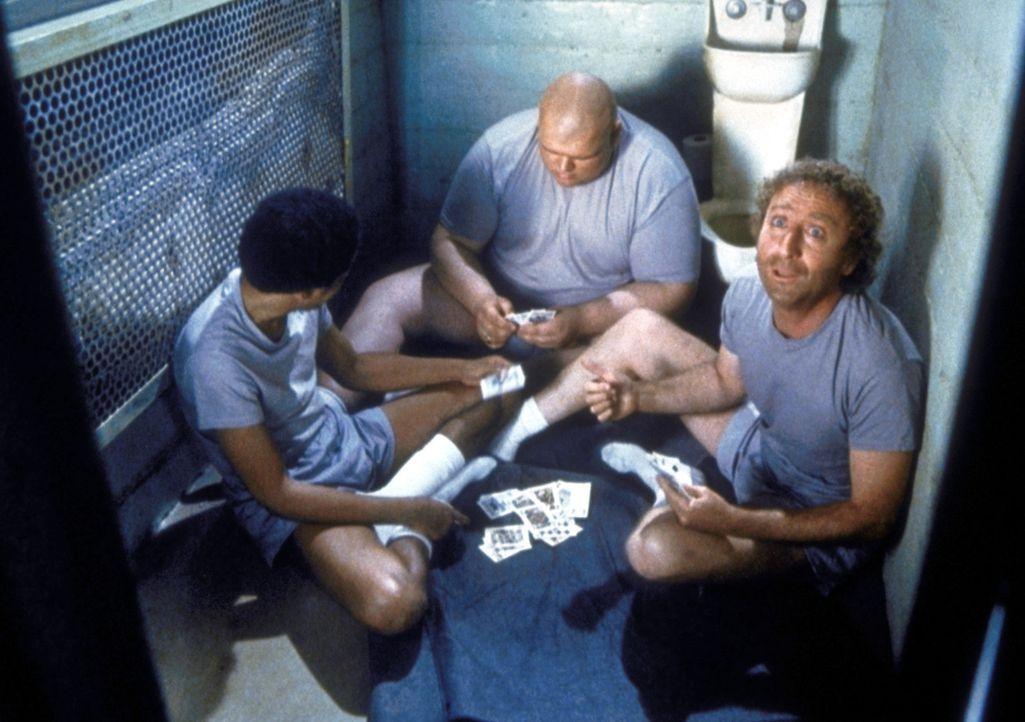 Schon bald freunden sich Skip (Gene Wilder, r.) und Harry (Richard Pryor, l.) mit ihren Zellengenossen an ... - Bildquelle: Columbia Pictures Corporation