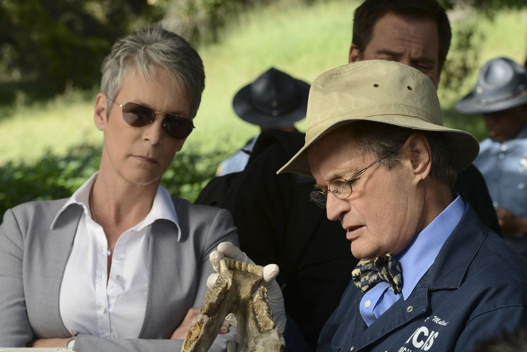 Noch stehen Samantha (Jamie Lee Curtis, l.) und Ducky (David McCallum, r.) vor einem Rätsel ... - Bildquelle: CBS Television
