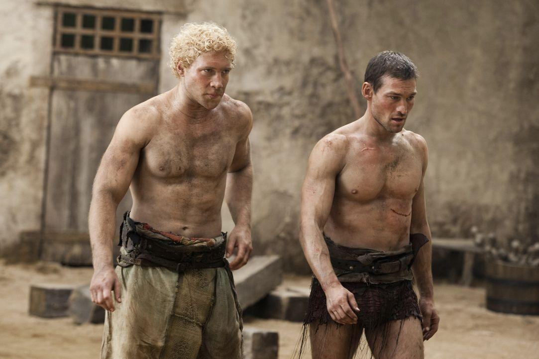Werden gute Freunde: Varro (Jai Courtney, l.) und Spartacus (Andy Whitfield, r.) ... - Bildquelle: 2010 Starz Entertainment, LLC