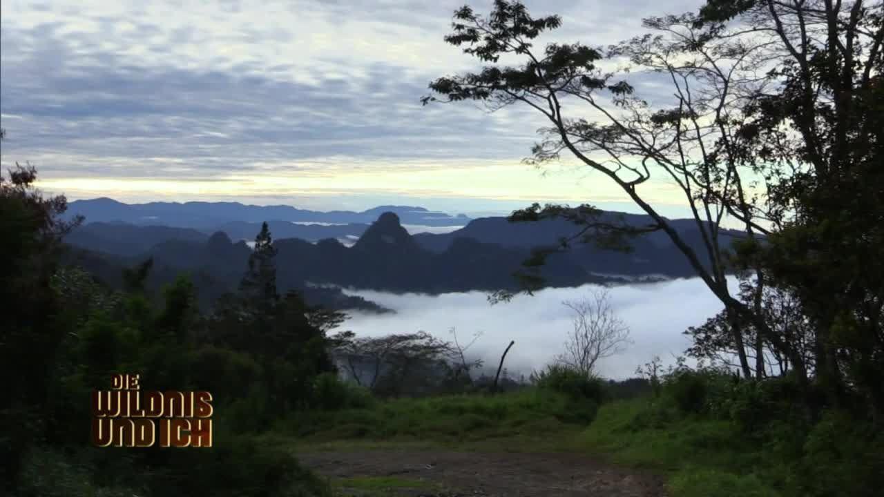 Gress in Papua Neuguinea1 - Bildquelle: kabel eins