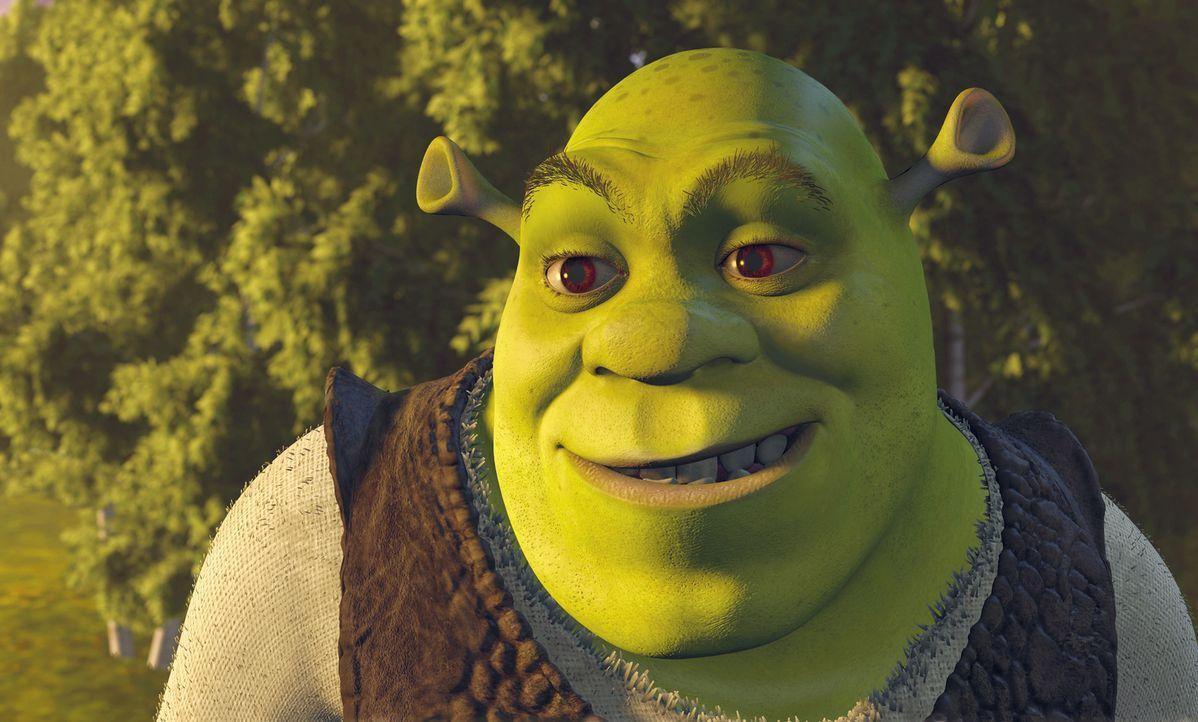 Shrek ist ein großer, hässlicher, grüner Sumpfbewohner. Nichts geht ihm über seine Ruhe, das tägliche Schlammbad und eine Portion leckere Waldkäfer.... - Bildquelle: TM &   2001 DreamWorks L.L.C.
