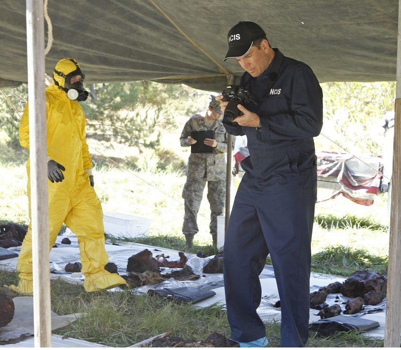 Ermittelt in einem neuen Fall: Tony (Michael Weatherly, r.) ... - Bildquelle: CBS Television