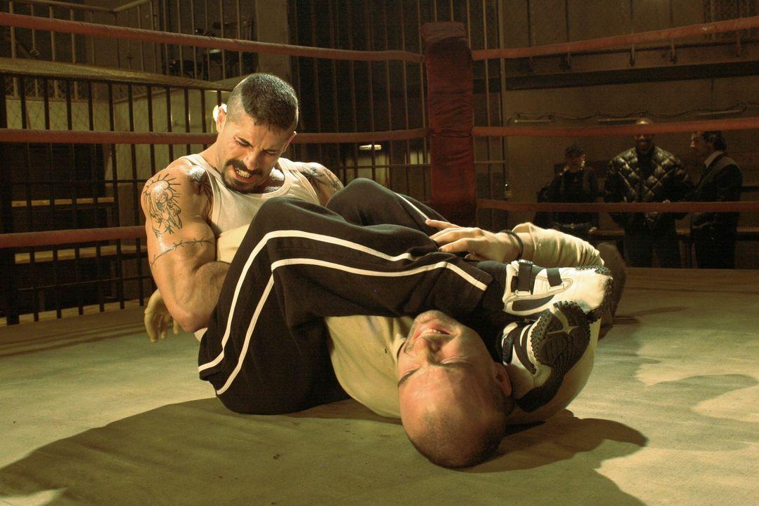 Schon beim Training gibt Box-Champion Yuri Boyka (Scott Adkins, l.) alles, denn er hat endlich Blut geleckt ... - Bildquelle: Nu Image Films