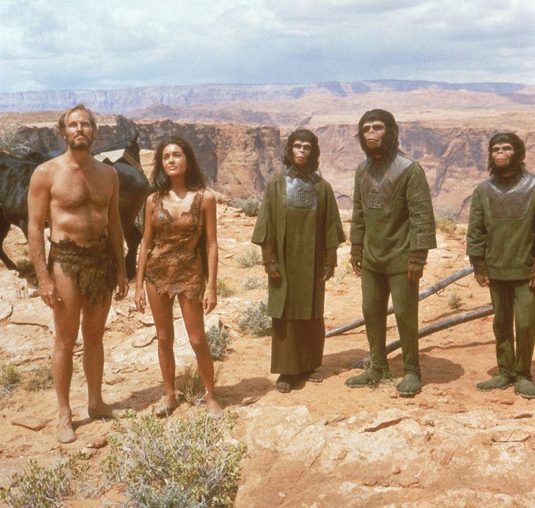 Dr. Zira (Kim Hunter, M.) und Dr. Cornelius (Roddy McDowell, 2.v.r.) wollen schließlich Taylor (Charlton Heston, l.) und Nova (Linda Harrison, 2.v.... - Bildquelle: 20th Century Fox International Television