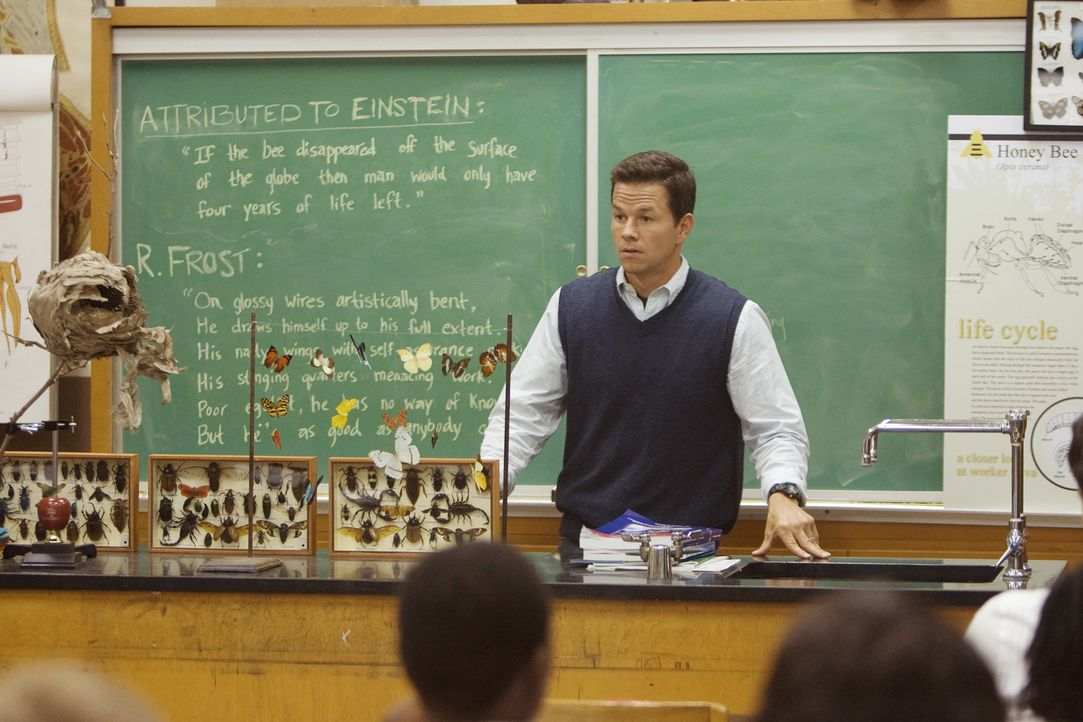 Eben noch hat Elliot (Mark Wahlberg) mit seinen Schülern gerätselt, wieso plötzlich Millionen von Bienen verschwinden, als er erfährt, dass sich die... - Bildquelle: 20th Century Fox