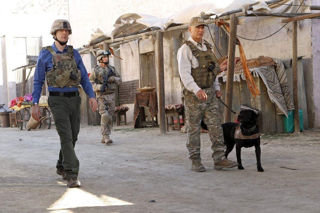 In Afghanistan wird ein Hundeführer der Marines, Ted LaMere, aus dem Hinterhalt erschossen. Gibbs (Mark Harmon, r.) und McGee (Sean Murray, l.) begi... - Bildquelle: CBS Television