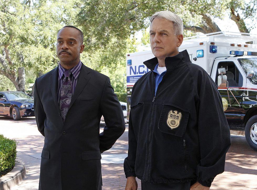 Ermitteln in einem neuen Fall: Vance (Rocky Carroll, l.) und Gibbs (Mark Harmon, r.) ... - Bildquelle: CBS Television