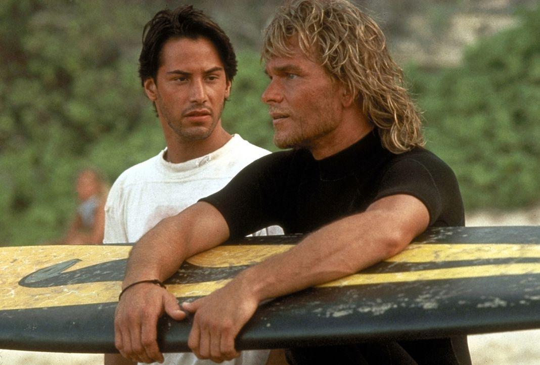 Schnell freundet sich FBI-Agent Johnny Utah (Keanu Reeves, l.) mit der Clique um den Surfer Bodhi (Patrick Swayze, r.) an. Doch schon bald muss er s... - Bildquelle: Largo International N.V. All rights reserved.