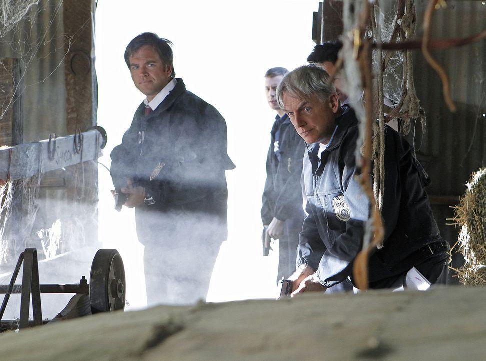 Ermitteln in einem neuen Fall: Tony (Michael Weatherly, l.), McGee (Sean Murray, M.) und Gibbs (Mark Harmon, r.) ... - Bildquelle: CBS Television