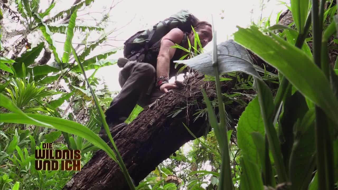 Gress in Papua Neuguinea12 - Bildquelle: kabel eins