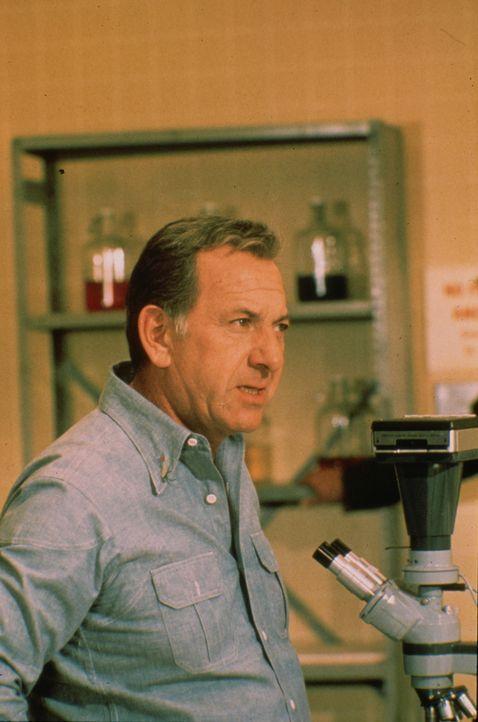 Quincy (Jack Klugman) ist mit seinem Freund Danny zum Angeln in den kleinen Ort Paradise gefahren. Er wird unvermittelt in einen Mordfall verstrickt... - Bildquelle: Universal Pictures