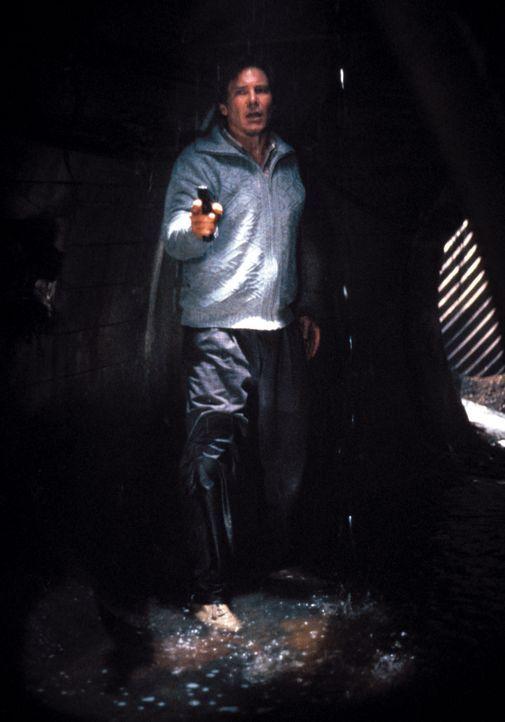 Sucht auf eigene Faust den Mörder seiner Frau: Dr. Richard Kimble (Harrison Ford) ... - Bildquelle: Warner Brothers International Television Distribution Inc.
