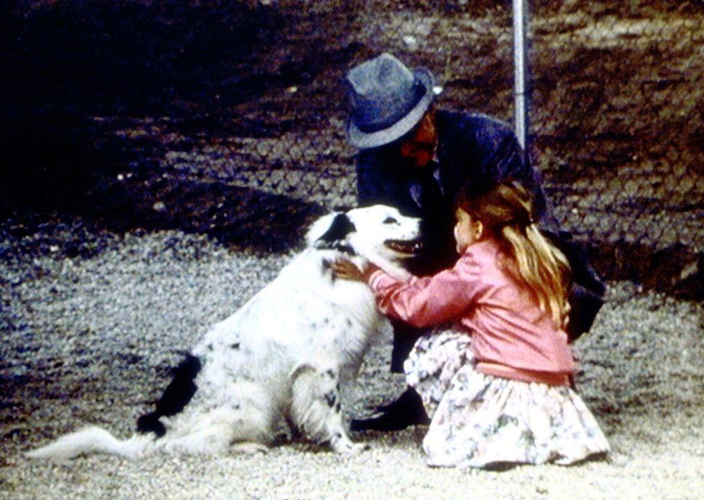 Jenny (Elizabeth Harnois, r.) und ihr Großvater (William Schallert, l.) sind glücklich, den davongelaufenen Jake nach über einem Monat im Tierhei... - Bildquelle: Worldvision Enterprises, Inc.