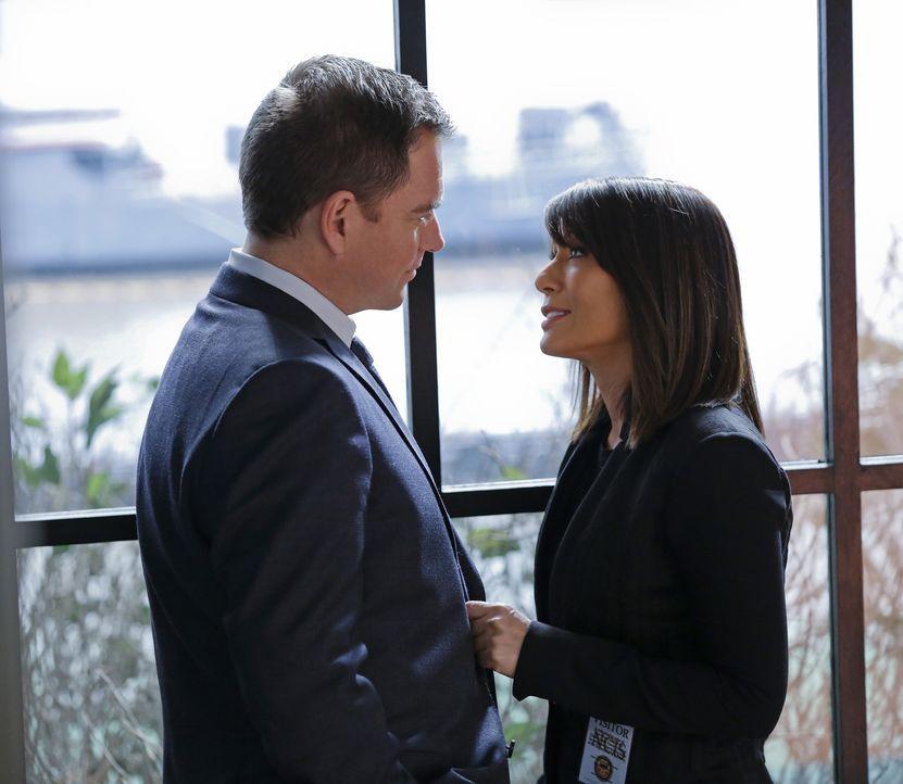 Ermitteln zusammen in einem neuen Mordfall: DiNozzo (Michael Weatherly, l.) und seine Freundin ATF Special Agent Zoe Keates (Marisol Nichols, r.) ... - Bildquelle: Cliff Lipson CBS Television