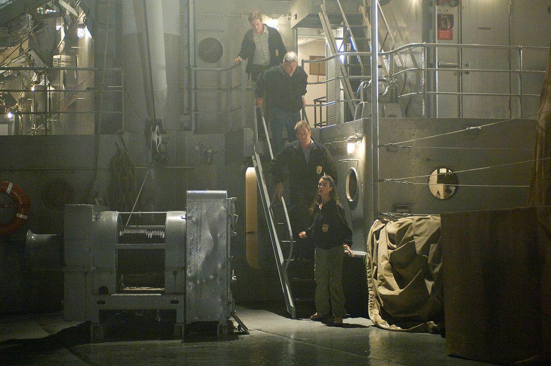 Bei ihren Ermittlungen stoßen Gibbs (Mark Harmon, 2.v.oben), McGee (Sean Murray, oben), Ziva (Cote de Pablo, unten) und Tony (Michael Weathely, 2.v.... - Bildquelle: CBS Television