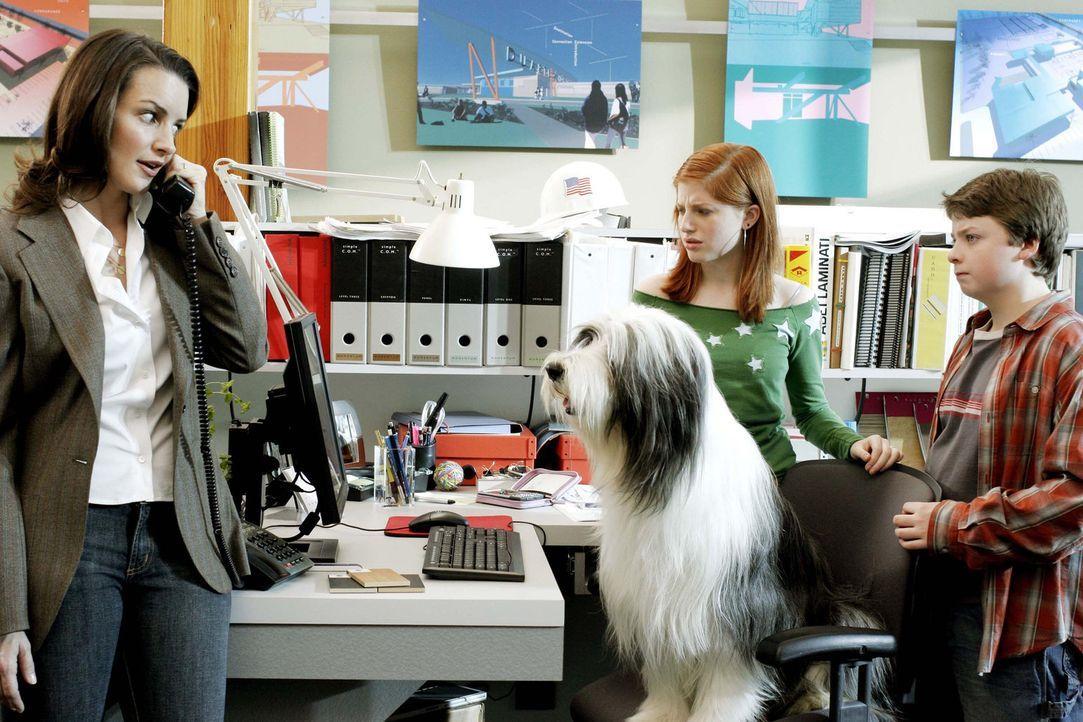 Als Hund Shaggy lernt Staranwalt Dave Douglas seine Kinder Josh (Spencer Breslin, r.), Carly (Zena Grey, M.) und seine Frau Rebecca (Kristin Davis,... - Bildquelle: Disney Enterprises, Inc. All rights reserved