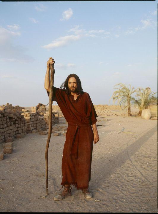 Mit Gottes Hilfe kann Moses (Dougray Scott) seinem Volk die täglich benötigte Ration an Wasser und Nahrung verschaffen ... - Bildquelle: Hallmark Entertainment
