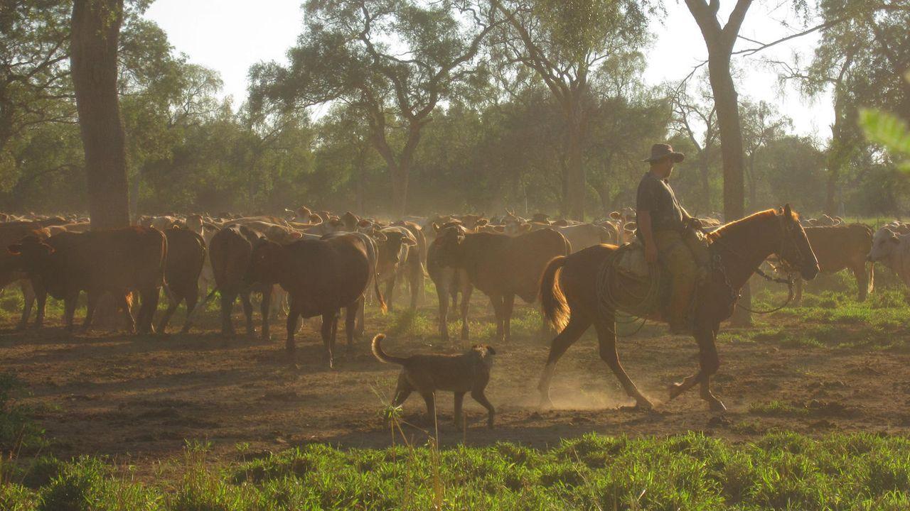 Cowboys in Südamerika - Bildquelle: Dietmar Klumpp
