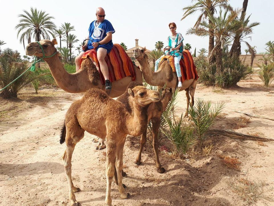 Das rheinländische Ehepaar Bianka (r.) und Ralf (l.) darf ins marokkanische Marrakesch reisen. - Bildquelle: kabel eins