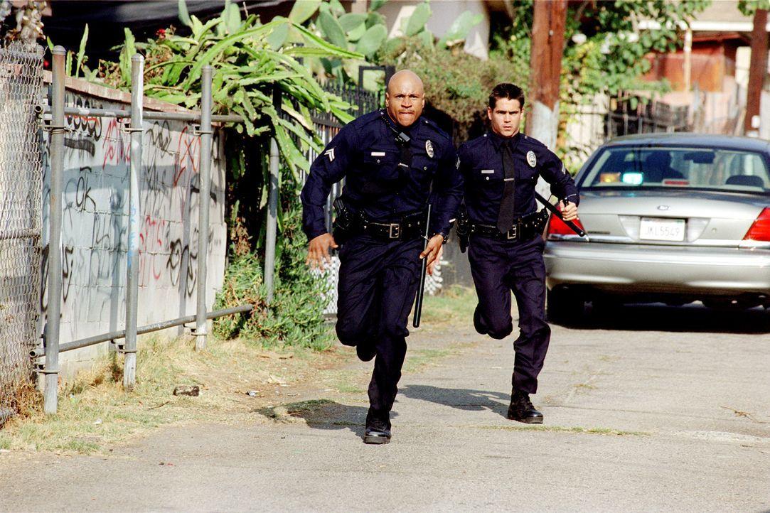 Während das S.W.A.T.-Team (Colin Farrell, r. und LL Cool J, l.) den Transport des Drogenbarons aus der Stadt hinaus begleitet, um ihn in die Hände... - Bildquelle: 2004 Sony Pictures Television International. All Rights Reserved.