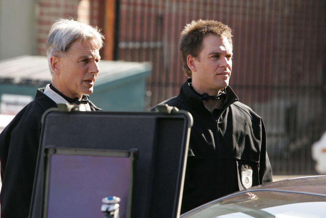 Versuchen, Ari zur Strecke zu bringen: Tony (Michael Weatherly, r.) und Gibbs (Mark Harmon, l.) ... - Bildquelle: CBS Television