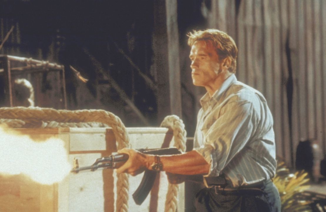 Auf gnadenlosem Kurs: Harry Tusker (Arnold Schwarzenegger) ... - Bildquelle: 20th Century Fox Film Corporation