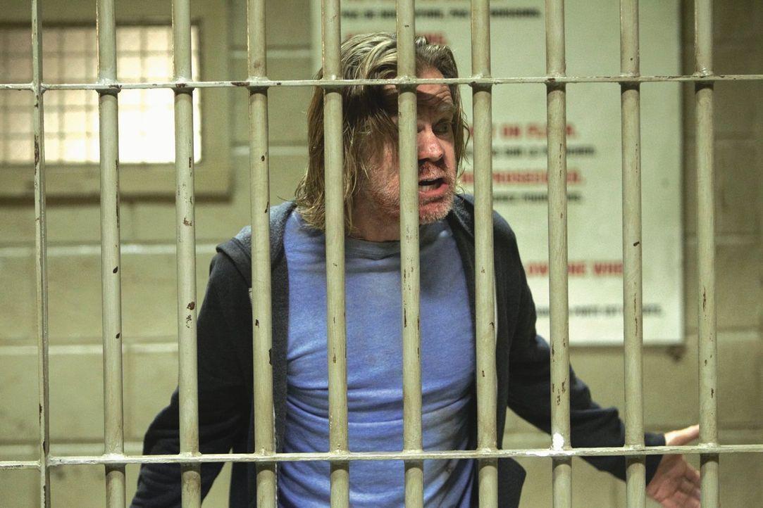 Nach einer weiteren Nacht im Delirium wacht Frank (William H. Macy) in Kanada auf ... - Bildquelle: 2010 Warner Brothers