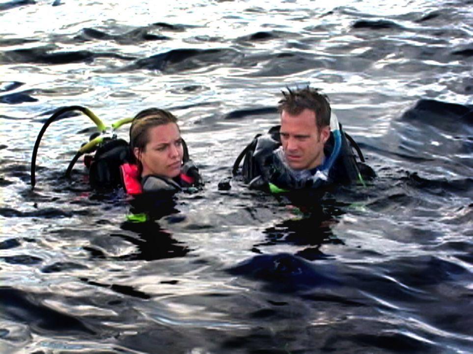 Als sich das Pärchen Susan (Blanchard Ryan, l.) und Daniel (Daniel Travis, r.) nach einem Tauchausflug plötzlich allein mitten im Ozean wiederfind... - Bildquelle: 2004 Lions Gate Films. All Rights Reserved.
