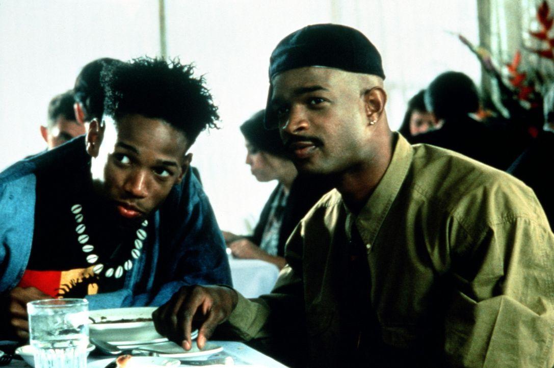 Peilen zwei hübsche Mädchen an: die gaunernden Gebrüder Johnny (Damon Wayans, r.) und Seymour Stewart (Marlon Wayans, l.) ... - Bildquelle: Columbia Pictures