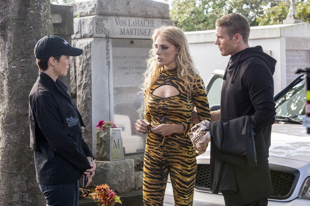 Können Raquelle (Brooke Hurring, M.) und Eric (Brett Zimmerman, r.) Brody (Zoe McLellan, l.) bei den Ermittlungen in einem neuen Mordfall weiterhelf... - Bildquelle: 2014 CBS Broadcasting Inc. All Rights Reserved.
