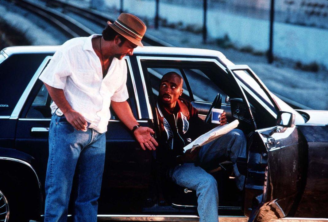 Das schmutzige Geschäft läuft zehnmal gut, doch der elfte Käufer ist ein undercover DEA-Agent. Nun fängt der Ärger für die korrupten Cops Divi... - Bildquelle: Orion Pictures Entertainment