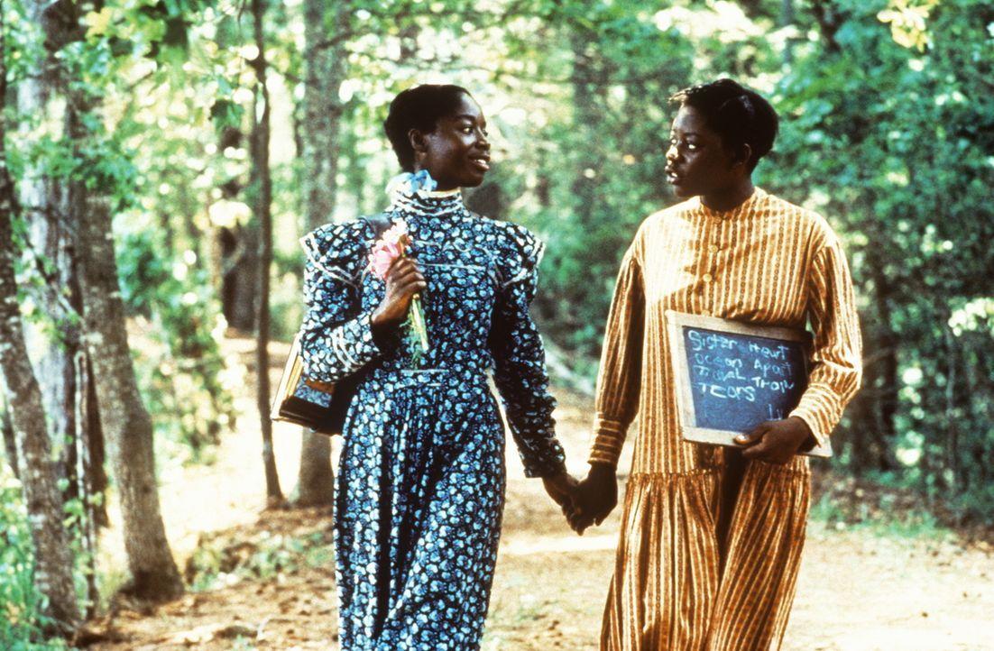 Die beiden Schwestern Nettie (Akosua Busia, l.) und Celie (Desreta Jackson, r.) unterstützen sich in jeder Lebenslage, bis sie voneinander getrennt... - Bildquelle: Warner Bros.