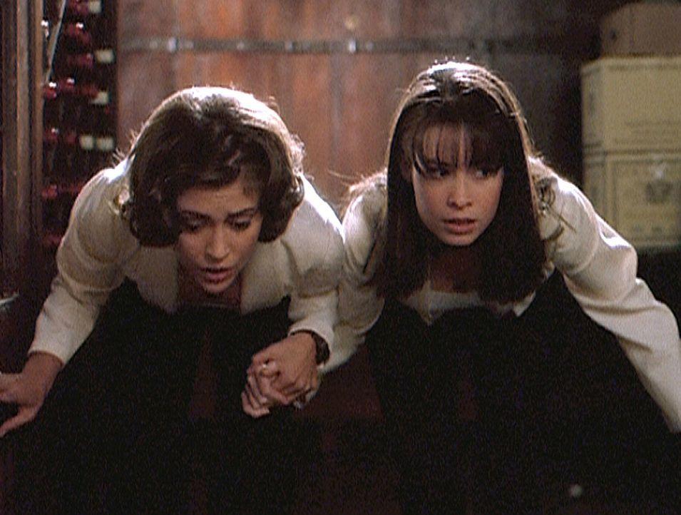 Während der Vorbereitungen einer Hochzeitsgesellschaft machen Phoebe (Alyssa Milano, l.) und Piper (Holly Marie Combs, r.) eine schreckliche Entdec... - Bildquelle: Paramount Pictures