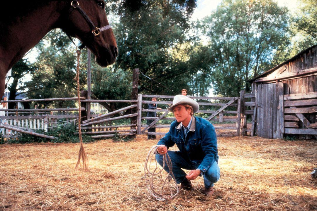 """Der """"Pferdeflüsterer"""" Tom Booker (Robert Redford) gibt sich alle Mühe, um das verstörte Pferd Pilgrim zu heilen ... - Bildquelle: Elliott Marks Touchstone Pictures"""