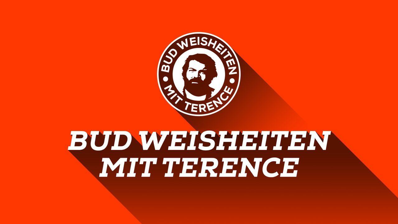 Bud-Weisheiten mit Terence_Intro