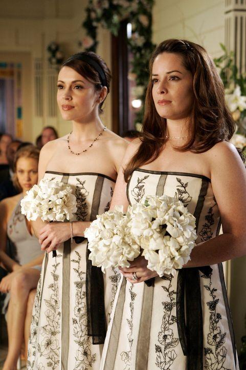 Freuen sich sehr für Paige: Phoebe (Alyssa Milano, l.) und Piper (Holly Marie Combs, r.) ... - Bildquelle: Paramount Pictures