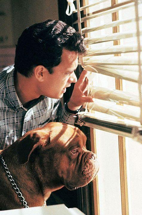 Scott (Tom Hanks) und Huutsch ermitteln gemeinsam ... - Bildquelle: Touchstone Pictures