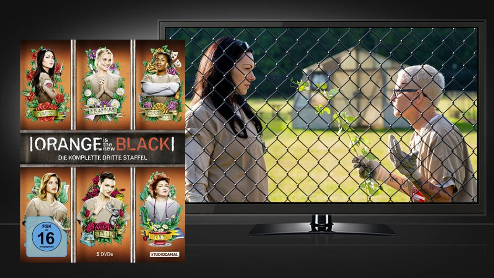 Orange Is The New Black - Staffel 3 (Blu-ray) - Bildquelle: STUDIOCANAL
