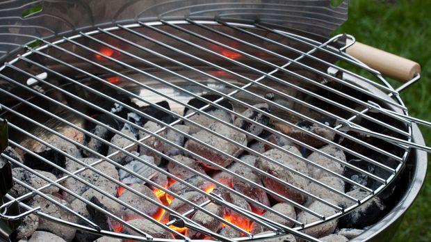 Bester Holzkohlegrill Preis Leistung : Grill kaufen leicht gemacht u2013 mit hilfreichen tipps