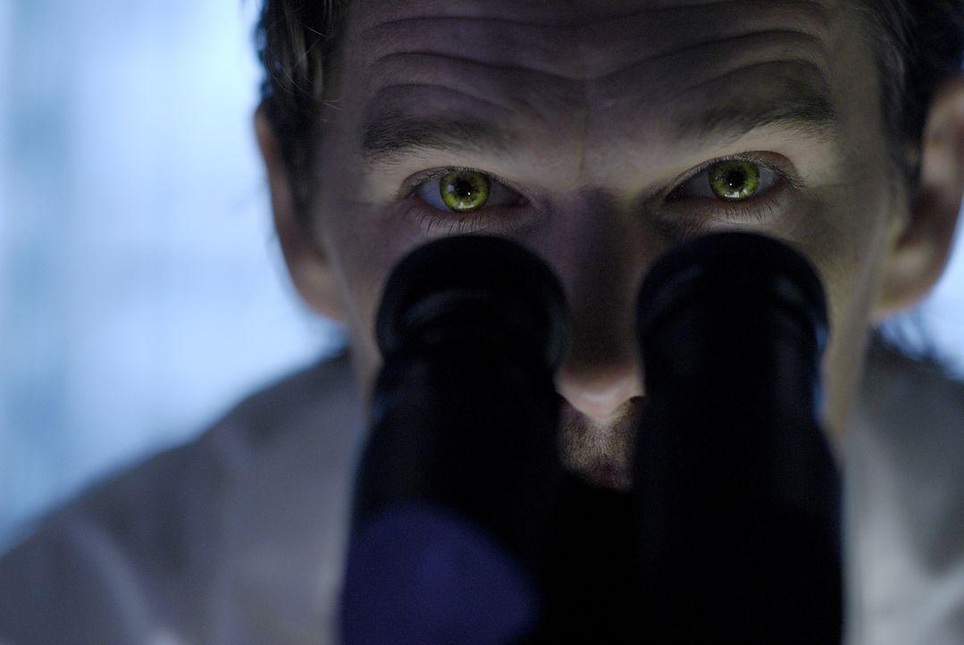 Im Jahr 2019 beherrschen fast ausschließlich Vampire die Erde. Die noch letzten lebenden Menschen werden von ihnen wegen ihrem kostbaren Blut gejagt... - Bildquelle: 2010 Tiberius Film GmbH & Co. KG