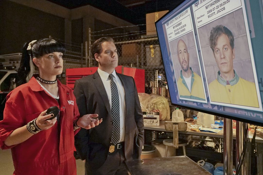 Versuchen alles, um die zwei entflohenen Häftlinge zu finden: Abby (Pauley Perrette, l.) und Tony (Michael Weatherly, r.) ... - Bildquelle: Bill Inoshita 2016 CBS Broadcasting, Inc. All Rights Reserved / Bill Inoshita